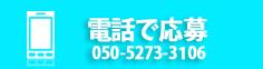 050-5273-3106